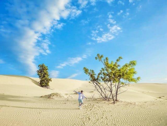 បណ្តាកន្លែងស្រស់ស្អាតភ្ញៀវទេសចរគួរតែមកទស្សនា នៅខេត្ត Ninh Thuan