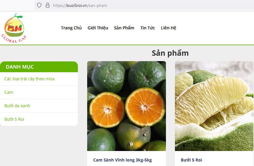"""ផលិតផលកសិកម្ម Vinh Long ត្រូវបានចុះបញ្ជីនៅលើទីផ្សារពាណិជ្ជកម្មអេឡិចត្រូនិក ដែលមានឈ្មោះដែនគេហទំព័រថា """" .vn"""""""